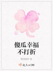 《傻瓜幸福不打折》小说封面