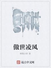 《傲世凌风》小说封面
