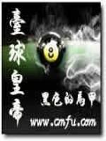 《台球皇帝》小说封面