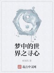 《梦中的世界之寻心》小说封面