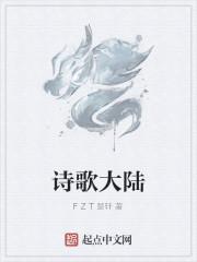 《诗歌大陆》小说封面