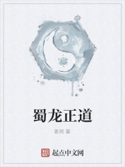 《蜀龙正道》小说封面