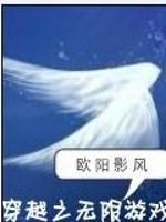 《穿越之无限游戏》小说封面