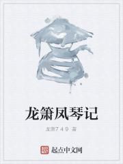 《龙箫凤琴记》小说封面