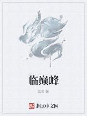 《临巅峰》小说封面