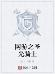 《网游之圣光骑士》小说封面