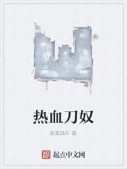 《热血刀奴》小说封面