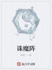 《诛魔阵》小说封面