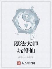 《魔法大师玩修仙》小说封面