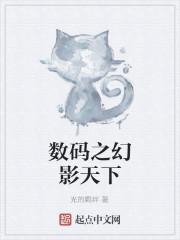 《数码之幻影天下》小说封面