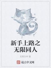 《新手上路之无限同人》小说封面