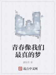 《青春像我们最真的梦》小说封面