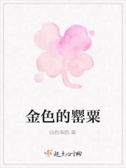 《金色的罂粟》小说封面