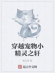 《穿越宠物小精灵之轩》作者:魂之狼