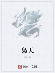 《枭天》小说封面