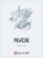 《纯武流》小说封面