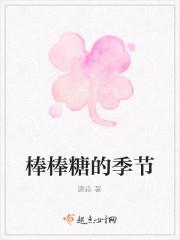 《棒棒糖的季节》小说封面
