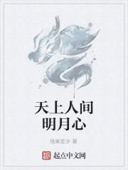 《天上人间明月心》小说封面