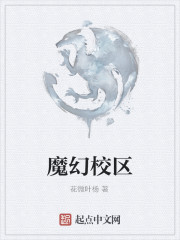 《魔幻校区》作者:花微叶杨