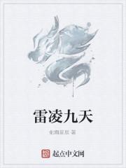 《雷凌九天》小说封面