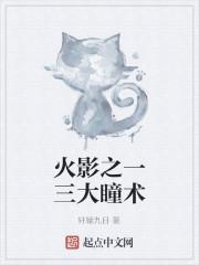 《火影之一三大瞳术》作者:轩辕九日
