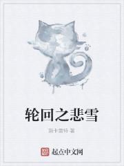 《轮回之悲雪》小说封面