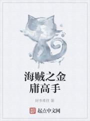 《海贼之金庸高手》小说封面