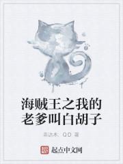 《海贼王之我的老爹叫白胡子》小说封面