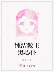 《纯洁教主黑心仆》小说封面