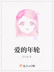 《爱的年轮》小说封面