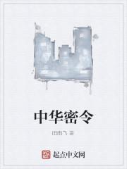 《中华密令》作者:田雨飞
