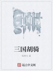 《三国胡骑》作者:陈明弓