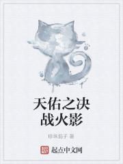 《天佑之决战火影》小说封面