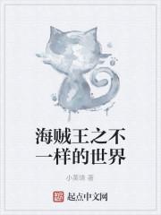 《海贼王之不一样的世界》小说封面
