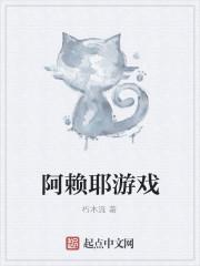 《阿赖耶游戏》小说封面