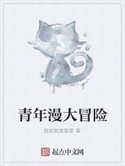 《青年漫大冒险》小说封面