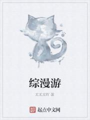 《综漫游》小说封面