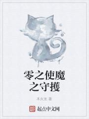 《零之使魔之守擭》小说封面