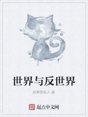 《世界与反世界》小说封面