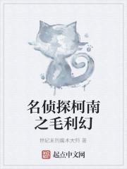 《名侦探柯南之毛利幻》小说封面