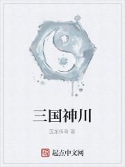 《三国神川》作者:玉龙传奇