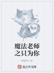《魔法老师之只为你》小说封面