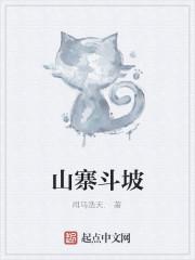 《山寨斗坡》小说封面