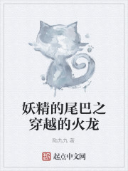 《妖精的尾巴之穿越的火龙》小说封面