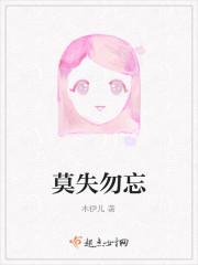 《莫失勿忘》小说封面