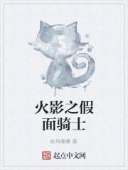 《火影之假面骑士》小说封面