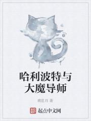 《哈利波特与大魔导师》小说封面