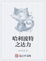 《哈利波特之达力》小说封面