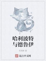 《哈利波特与德鲁伊》小说封面
