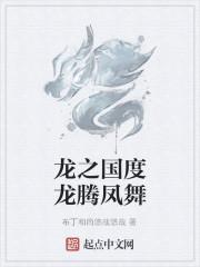 《龙之国度龙腾凤舞》作者:布丁和尚悠哉悠哉